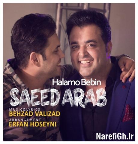 دانلود آهنگ حالمو ببین از سعید عرب با کیفیت 128 و 320
