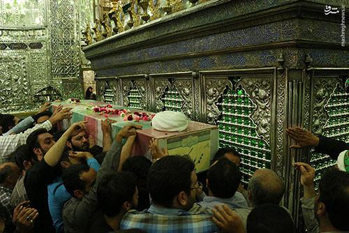 شهید مدافع حرم محمد پورهنگ