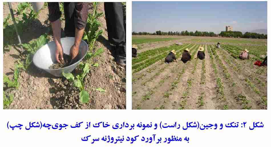 برآورد کود نیتروژن سرک در زراعت چغندر قند