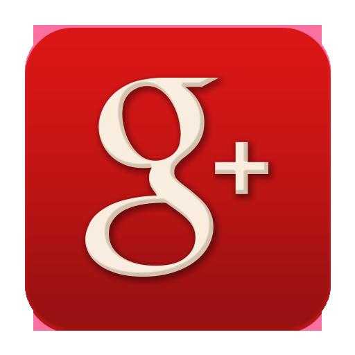 گوگل پلاس پالیزافزار