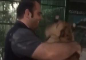 فیلم سرشاخ شدن بهداد سلیمی با یک ببر | عکسهای بهداد سلیمی و ببر در قفس