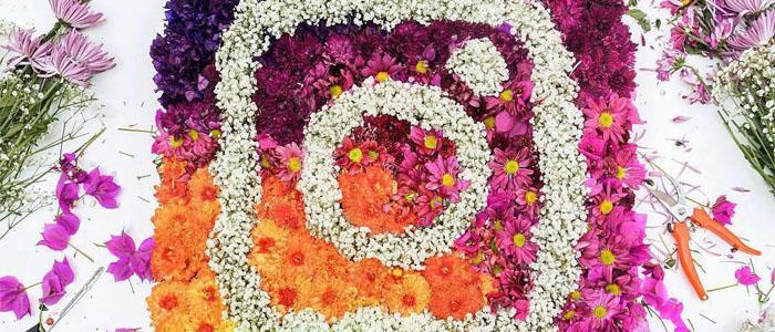 دانلود ورژن جدید اینستاگرام اندروید – Instagram 8.5.0+ و OGInsta+ با لینک مستقیم