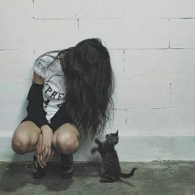 گربه اب بآ ابـــــروO.o 1