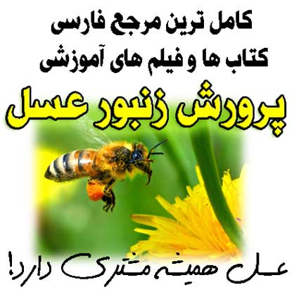 http://s8.picofile.com/file/8274093900/bee_cover01.jpg