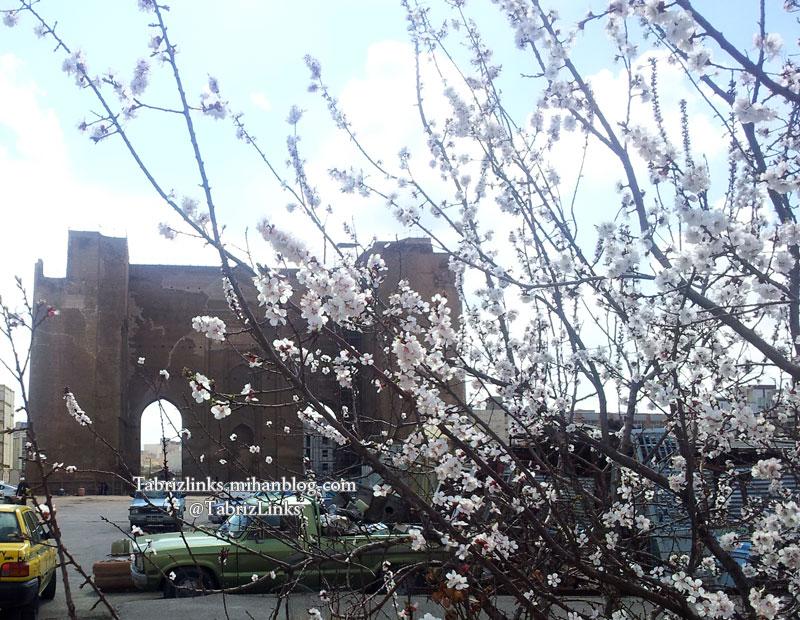 بهار تبریز