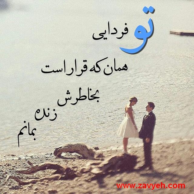 www.zavyeh.com
