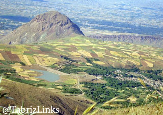 کوه میشو