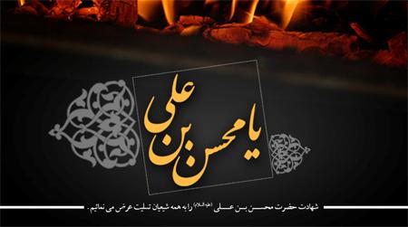 محمودعیدانیان-محمد شیری-مراسم هفتگی 95/9/13-هیئت محبان الزهرا(س)