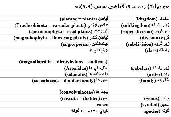 رده بندی گیاهی سس