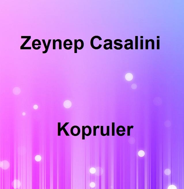 http://s8.picofile.com/file/8277774500/Kopruler.jpg