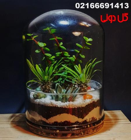 تولیدو توزیع انواع تراریوم 02166691413 - تراریوم تخت،گل دونی ...https://telegram.me/Goldooninet