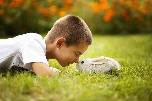 دوستی با حیوانات...