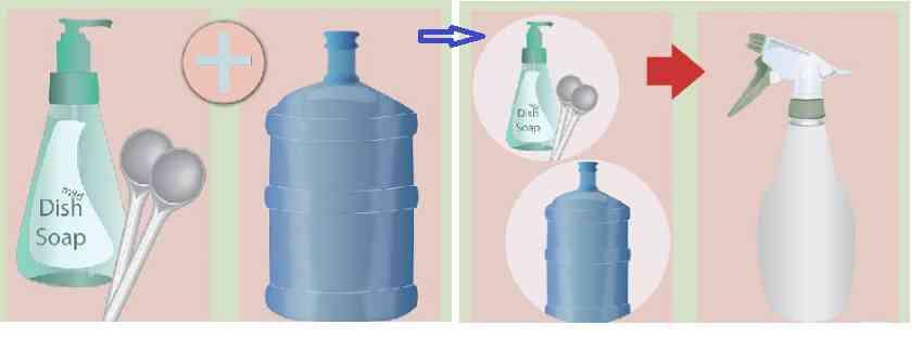 روش ساخت حشره کش خانگی با استفاده از صابون