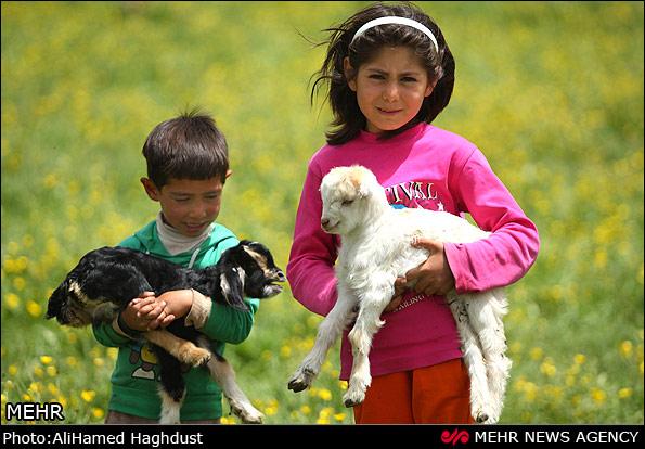 کودکان آذری