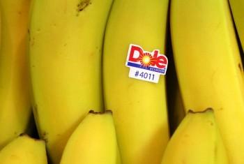 برچسب های روی میوه ها