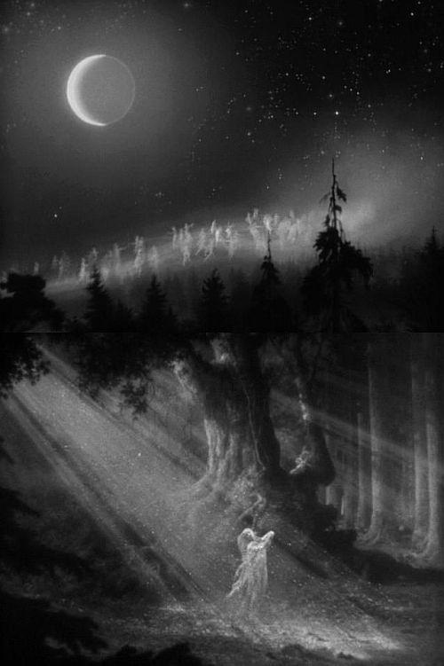 نمایی از فیلم رویای شب نیمه تابستان