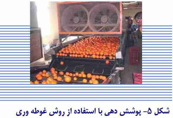 پوشش دهی میوه با استفاده از روش غوطه وری