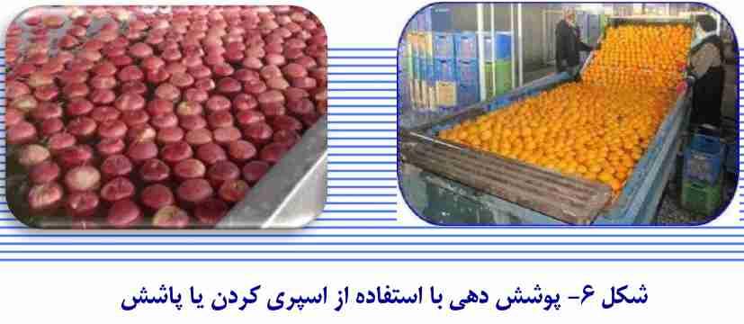 واکس زدن میوه با استفاده از روش اسپری