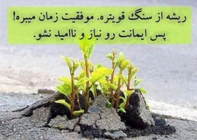 [تصویر:  thumb_HamMihan_2015831871274303141432970352_7283.jpg]