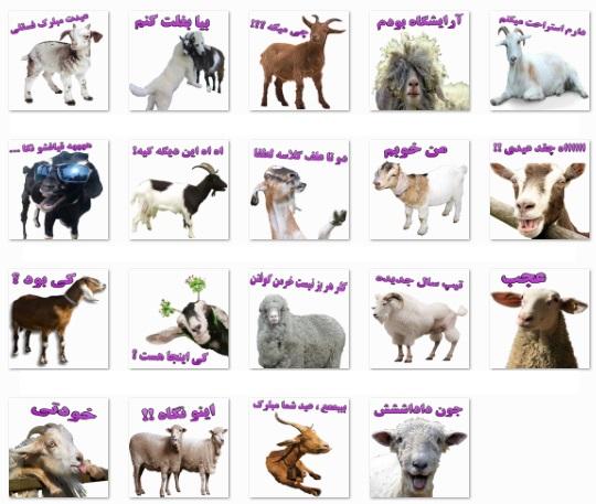 استیکر گوسفند 2