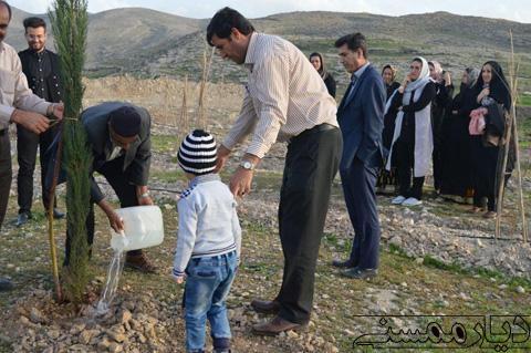 کاشت دو اصله درخت سرو توسط پدر و همسر شهید غلام جعفری