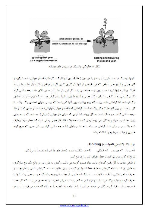 دانلود جزوه خلاصه سبزی کاری خصوصی pdf بر اساس کتاب دکتر عبدالکریم کاشی و جوادی