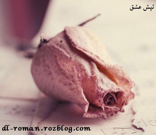 دانلود رمان تپش عشق