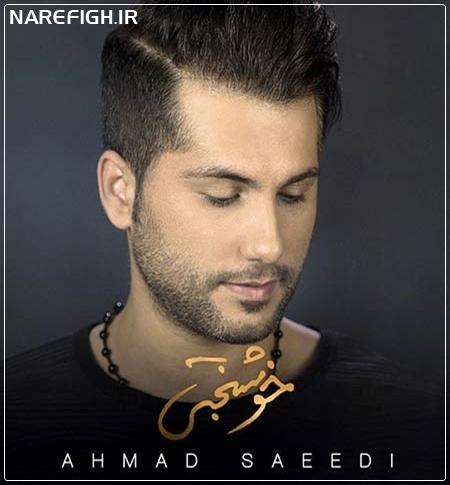 دانلود آهنگ خوشبختی از احمد سعیدی با کیفیت 128 و 320