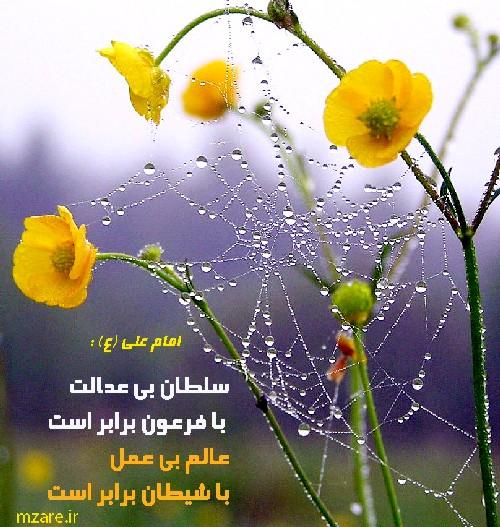 http://s8.picofile.com/file/8290980784/SHARM_HAYAA_2.jpg