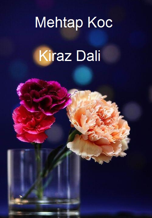 http://s8.picofile.com/file/8291691484/Kapak.jpg
