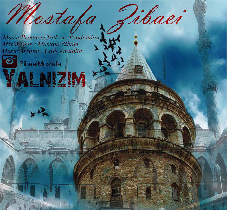 http://s8.picofile.com/file/8292031426/08Mostafa_Zibaei_Yalnizim.jpg