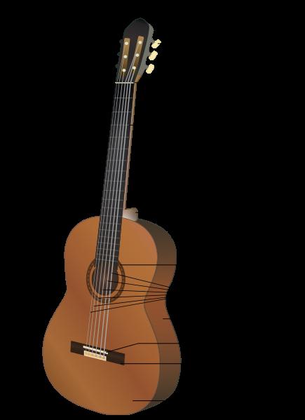 تاریخچه و انواع گیتار
