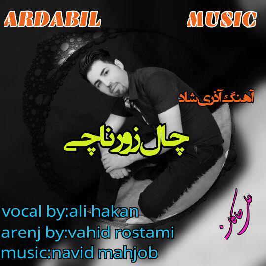 http://s8.picofile.com/file/8294541476/Ali_Hakan_Chal_Zurnaji.jpg