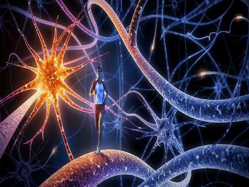 فایل خود هیپنوتیزم افزایش حافظه