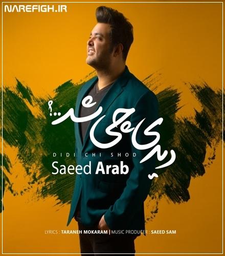 دالنود آهنگ دیدی چی شد از سعید عرب با کیفیت 128 و 320