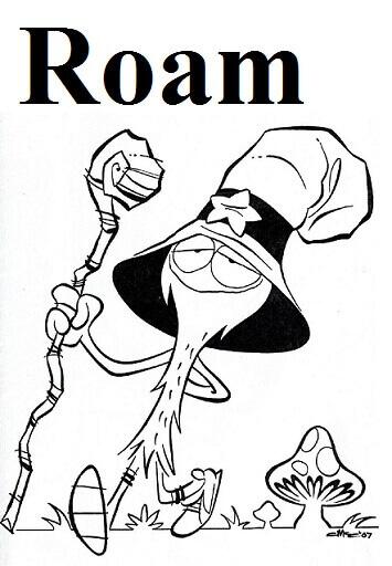 سرگردانى– Roam – آموزش لغات کتاب ۵٠۴ – English Vocabulary – کدینگ لغات ۵٠۴