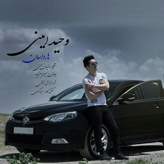 http://s8.picofile.com/file/8296632542/7Vahid_Amini_Hardasan_ArazMusic_98_IR_.jpg