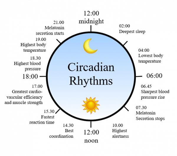 تجربه های ما در مورد خوابیدن و نکاتی که در خوابیدن رعایت میکنیم