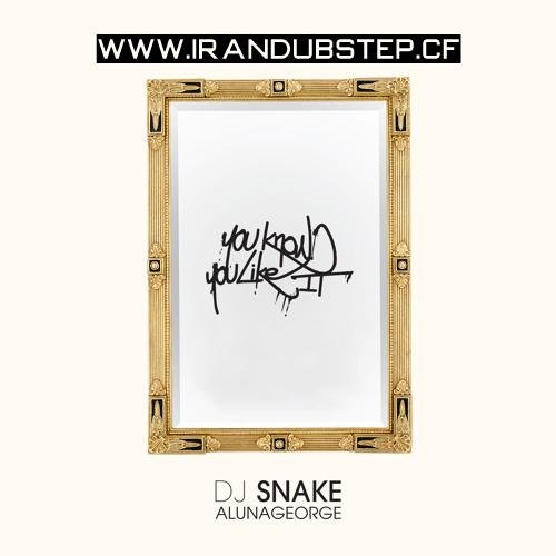 دانلود اهنگ DJ Snake & AlunaGeorge به نام You Know You Like