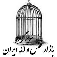 گروه بازار قفس و لانه ایران