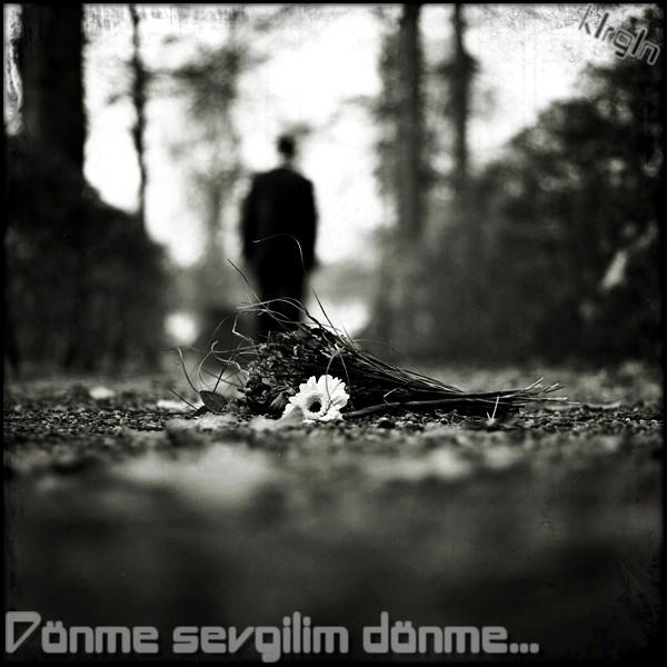 http://s8.picofile.com/file/8298547934/20Vusal_Bedelov_Atdin_Meni.jpg