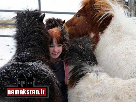 [عکس: Girl_Donkey_Photos_3.jpg]