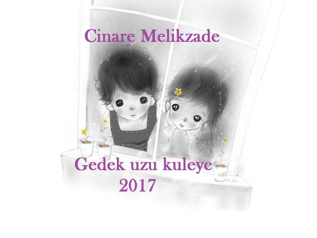 Cinare Melikzade - Gedek uzu kuleye 2017