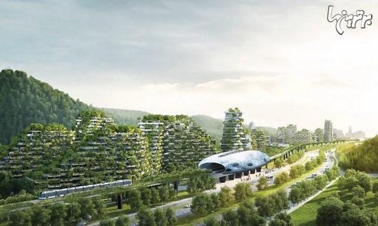 ساخت اولین شهر جنگلی در چین آغاز شد