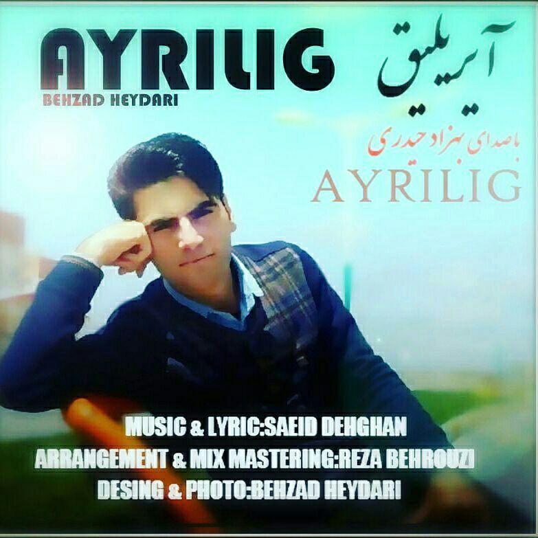 http://s8.picofile.com/file/8299718376/125Behzad_Heydari_Ayrilig.jpg