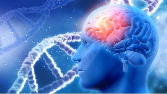 مغز عمدا برخی اطلاعات را فراموش میکند