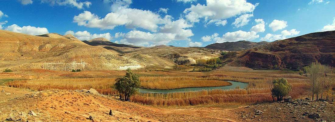 چمن متحرک چملی در روستای بدرلوی تکاب