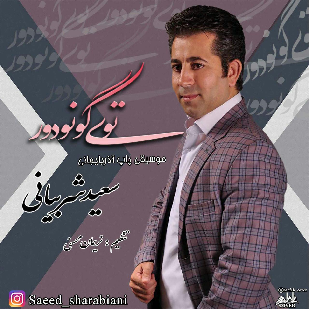 http://s8.picofile.com/file/8300915700/072Saeed_Sharabiani_Toy_Gunudur.jpg