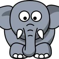 طوسی فیلی