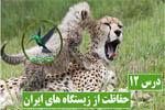 حفاظت از زیستگاه های ایران